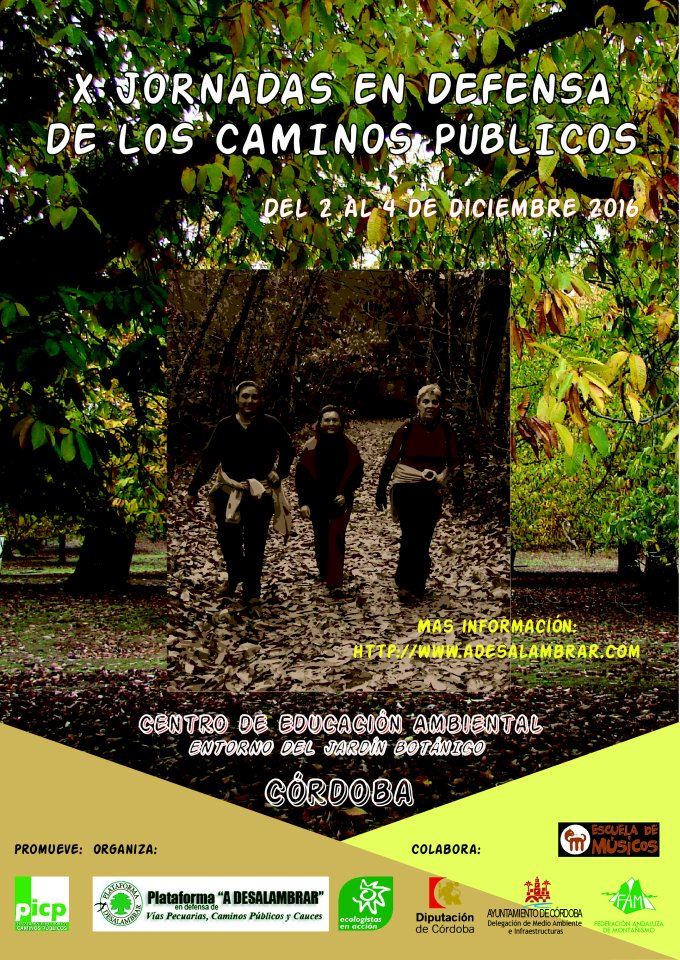 cartel_x_jornadas_picp_2016v2-01_1