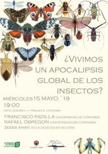 """Presentación """"Hoteles Insectos"""" en los patios de Córdoba"""